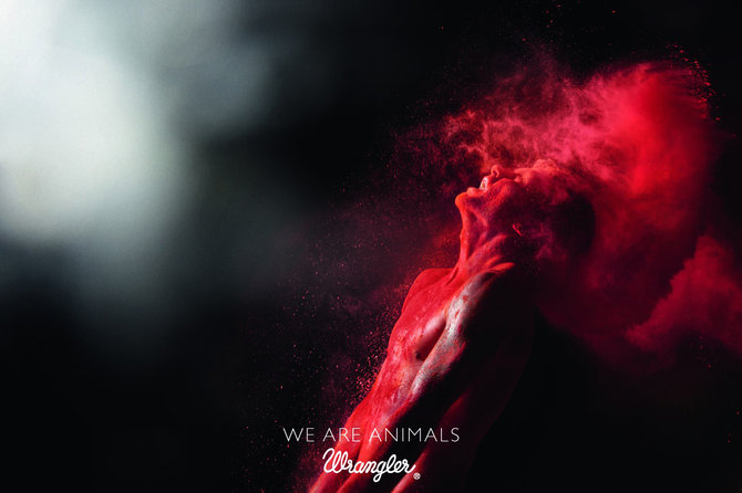 We are animals, di nuovo!