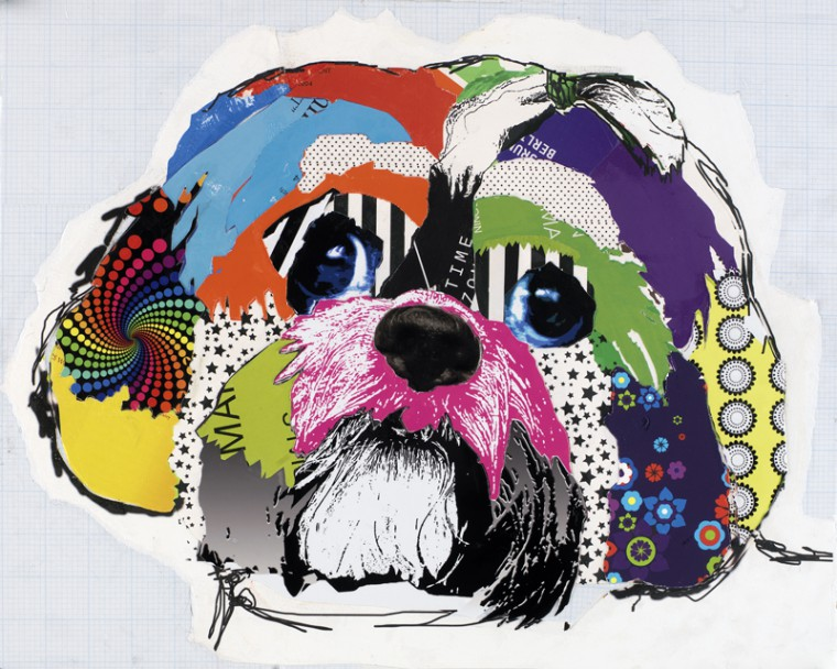 Shih Tzu Dog Pop Art Collage