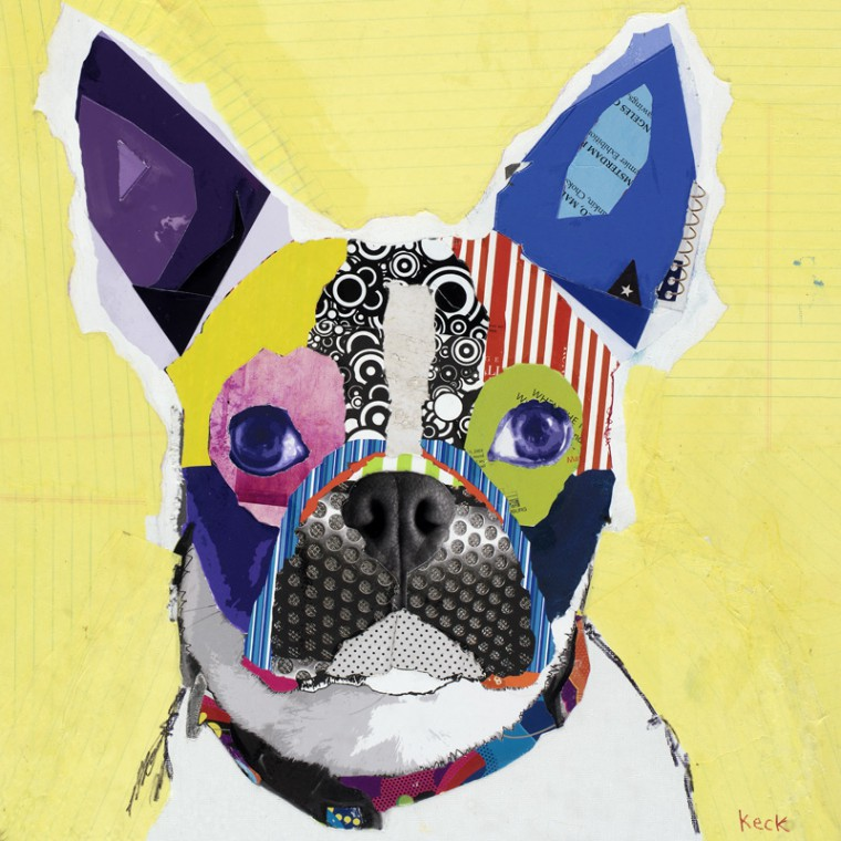 Boston Terrier Modern Dog Art Collage